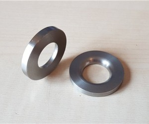Lower fulcrum pin inner washers (pair)